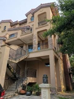 (平果市)碧桂园3室3厅3卫196.15m²豪华装修