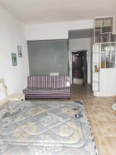 (平果市)龙景世家1室1厅1卫38m²简单装修